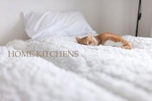 ねこベッド