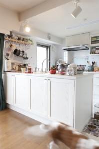 2列型キッチン